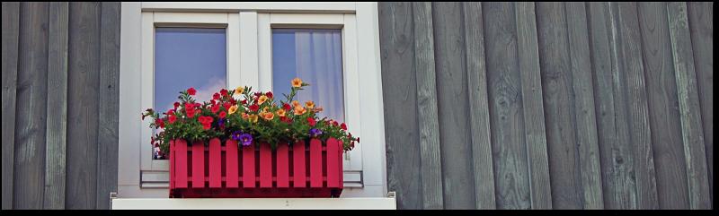 window_opt-1